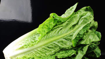 The Joe Pags Show - CDC Says Romaine Lettuce Is Not Safe To Eat