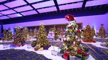 WHO Radio News - Festival of Trees and Lights in Des Moines MAP INFO