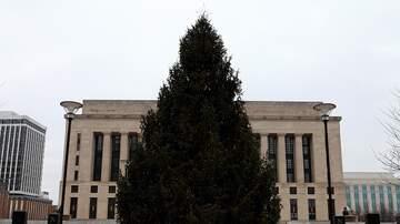 Zac - Nashville Christmas Tree Lighting  FREE Ceremony Nov 30!
