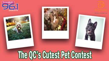 Contest Rules - QC's Cutest Pet Rules