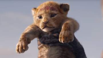 Katie Price - Have You Seen The New Lion King Trailer Yet?