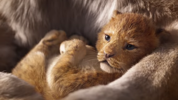 Bobby Bones - What 25 Yr Olds Care About: First Look At Disney's Live Action Lion King
