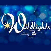Enter to win tickets to the Columbus Zoo Wildlights!