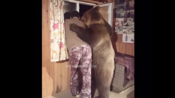 Qui West - Bear Casually Walks In A Mans House & Gives Him A Hug!