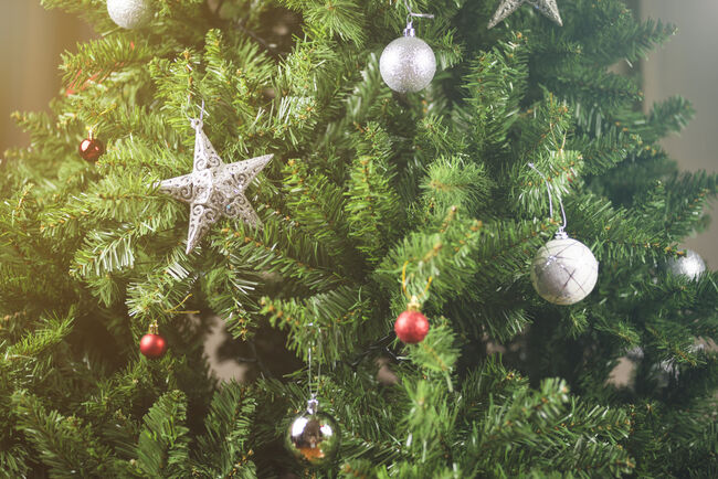 Here's How To Keep Your Christmas Tree Alive Through
