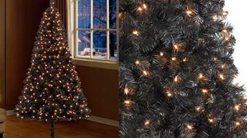 Suzette - Black Christmas Trees Are Trending & It Everything Christmas Should Be