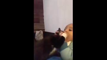 JB - Baby Tries To Eat Kitten