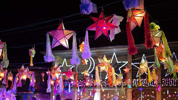 Bob and the Showgram - Looking For the Best Light Shows In The Triangle ?