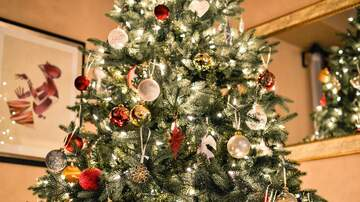 Lori - You Argue More Over The Holidays, Study Finds!