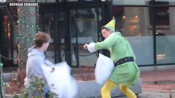 Tammy Daye - VIDEO: Buddy Elf Is Causing Mischief This Holiday