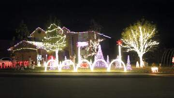 Bill Clifton - Hinojosa Family's Baby Shark Christmas Lights
