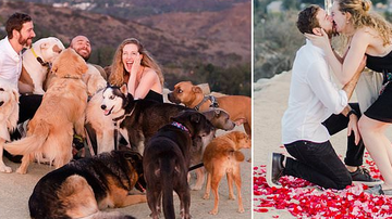 Paul Fletcher - Man Proposes to Girlfriend with 16 Puppies for Her To Play With