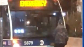 National News - Belligerent Man Stands In Front Of New York City Bus And Bashes Windshield
