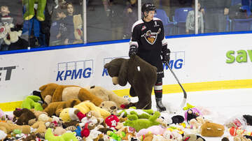 Letty B - 34,798 Teddy Bears Were Tossed At A Hockey Game And Broke World Record!