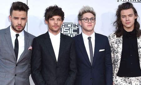 Entertainment News - A Potential One Direction Reunion Might Happen Over The Holidays