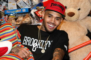 Chris Brown's GF Looks Like His Ex, Karrueche