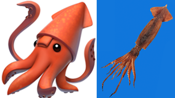 Weird News - Apple's Squid Emoji Mistakenly Had Its Butt On Its Face And No One Noticed