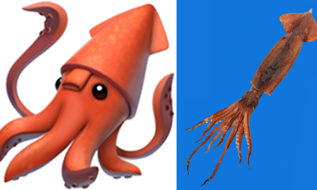 National News - Apple's Squid Emoji Mistakenly Had Its Butt On Its Face And No One Noticed