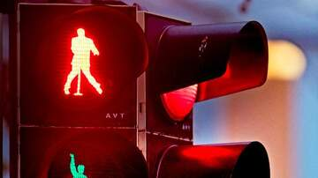 Mike McConnell - Elvis Stop Lights in Germany
