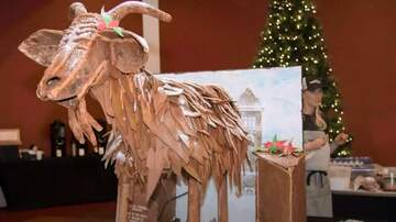 Laura - Local bakers made a gingerbread Garbage Goat