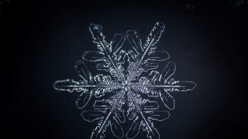 Toby Knapp - TRY THIS: Make some SNOWFLAKES in your BROWSER!
