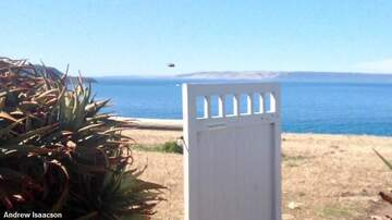Coast to Coast AM with George Noory - Odd UFO Photographed in Australia