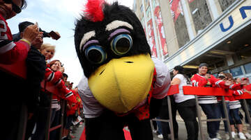 Steve Wazz - The Chicago Blackhawks Mascot Brawls with a Fan That Attacked Him