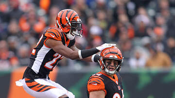 Lance McAlister - Bengals: Snaps and playing time