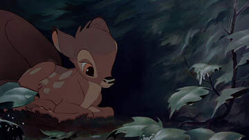 What We Talked About - Judge Orders Missouri Deer Poacher To Watch 'Bambi' While In Prison