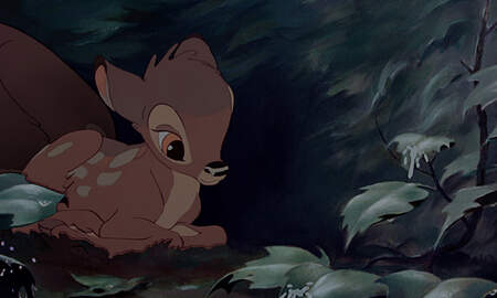 National News - Judge Orders Missouri Deer Poacher To Watch 'Bambi' While In Prison
