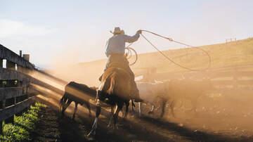 Fritz Blog (57563) - Cowboy Gets a Cringe Inducing Rope Burn