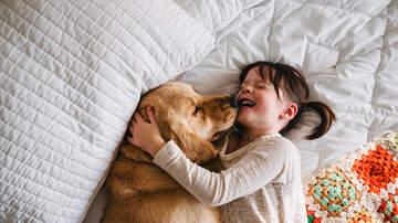 Paul Kelley - Having A Dog Helps You Live Longer