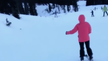 Amy's - Amy's Daughter Shows Skiing Skills Over Winter Break