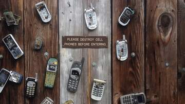 The BigDogz - Your Cellphone is out to Get You