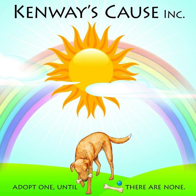 Adopt, Foster or SHARE the latest Kenway's Cause Pets!