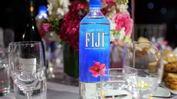 Wendy Wild - The Fiji Water Woman Was The Breakout Star At The Golden Globes