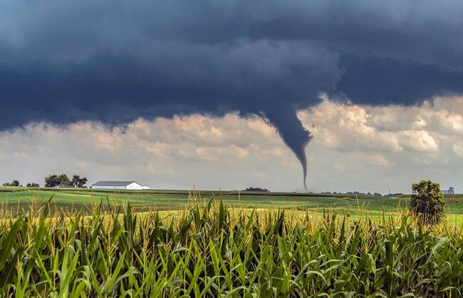 Pella tornado photographed by Willard Sharp, by permission Iowa Storm Chasing Network