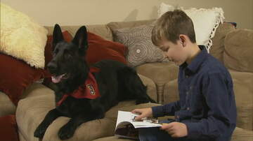Trevor D in the Morning Show - Stranger Drives 2,300 Miles to Reunite Boy with Dog