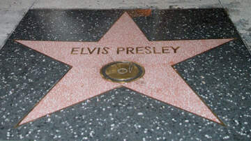 Maxwell - Star-Studded Line Up For Elvis' '68 Tribute!