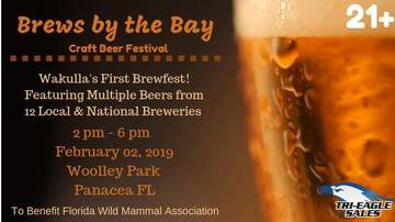 None - Brews by the Bay Craft Beer Festival