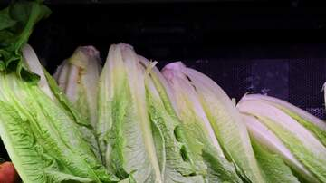 Carolyn McArdle - CDC Says It's OK To Buy Romaine Lettuce Again!