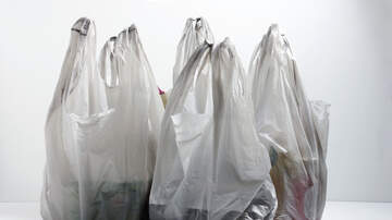 Capital Region News - Governor Cuomo To Include Plastic Bag Ban As Part Of His Budget