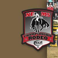 NE MISSISSIPPI CHAMPIONSHIP RODEO is coming to the BancorpSouth Arena