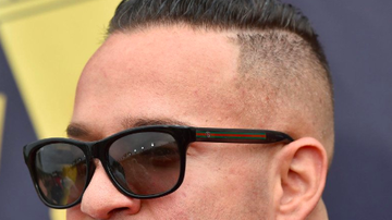 Buzzing - Mike The Situation from MTV's Jersey Shore Is In Prison