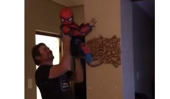 Harms - This Dad Helping His Kid be Spiderman is Amazing