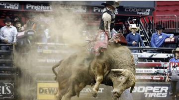 Beth Bradley - Professional bull rider dies after being stomped during competition