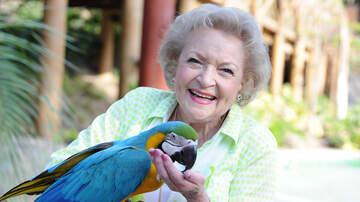 Wendy Wild - Happy Birthday Betty White! 🎈 Our Golden Girl Turns 97