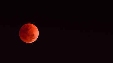 Joe Kelly - Super blood wolf moon this Sunday