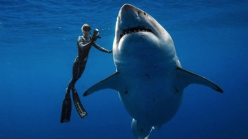Chuck Dizzle - The Biggest Great White Shark Ever Seen Spotted Near Hawaii!