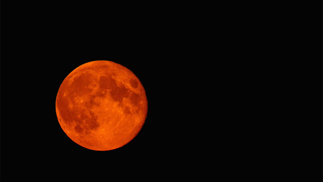 A blood red Super moon is seen rising in the sky